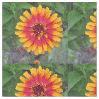 金黄橙色の《植物》百日草の花 ファブリック