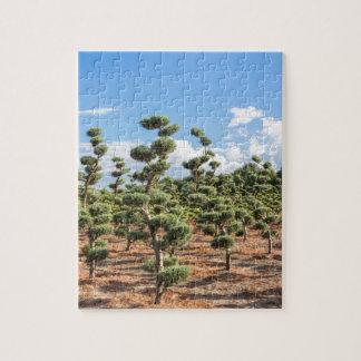 針葉樹の美しい装飾刈り込み法の形 ジグソーパズル