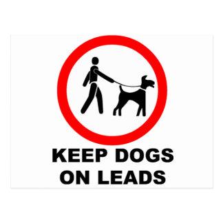 鉛の犬を飼って下さい ポストカード