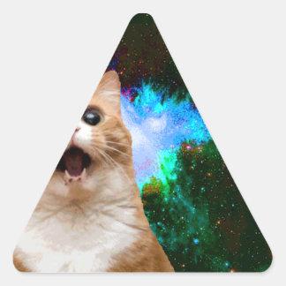 銀河系CAT 三角形シール