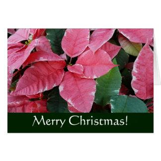 銀製の星の大理石のポインセチアのクリスマスカード カード