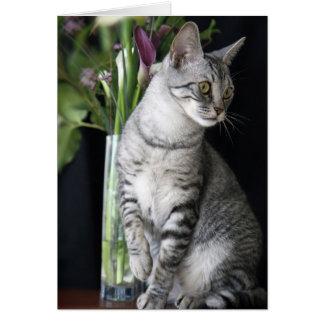 銀製の虎猫の挨拶状、含まれている封筒 カード