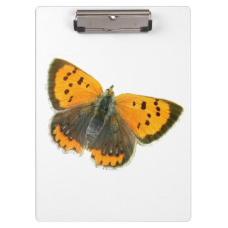 銅の蝶デザインのクリップボード クリップボード