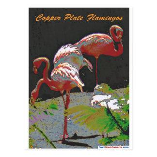 銅版のフラミンゴ ポストカード