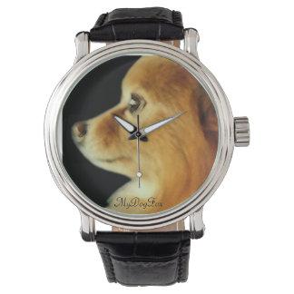 鋭い目のポメラニア犬 腕時計