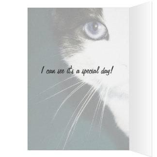鋭敏目の子猫のテンプレートの挨拶状 カード