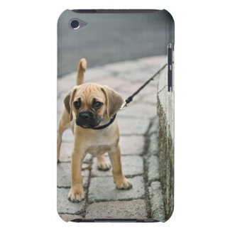 鎖の子犬 Case-Mate iPod TOUCH ケース