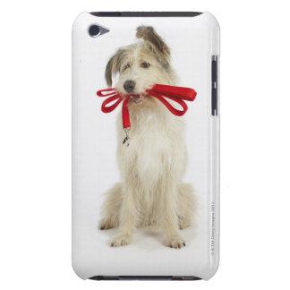 鎖を持つ犬のポートレート Case-Mate iPod TOUCH ケース