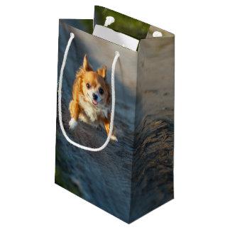 長い髪の茶色および白いチワワのランニング スモールペーパーバッグ