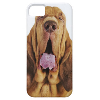 閉鎖した目を持つブラッドハウンド(St.ヒューバートの猟犬)、 iPhone SE/5/5s ケース