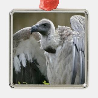 開いた翼を持つ白に支えられるハゲタカ メタルオーナメント