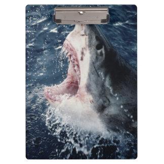 開いた高い鮫の口 クリップボード