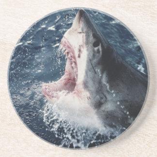 開いた高い鮫の口 コースター