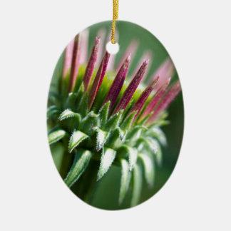 開始EchinaceaのConeflowerの花 セラミックオーナメント