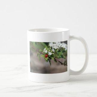 開花のそう白い花の近くで休んでいるBug女性 コーヒーマグカップ