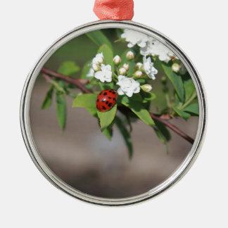 開花のそう白い花の近くで休んでいるBug女性 メタルオーナメント