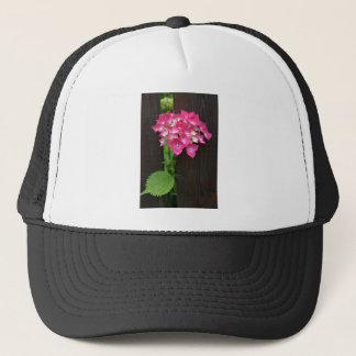 開花のアジサイ キャップ