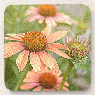 開花のコースターセットの花 コースター