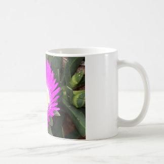 開花のショッキングピンクのPigfaceの花 コーヒーマグカップ