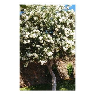 開花のジャスミンの木 便箋