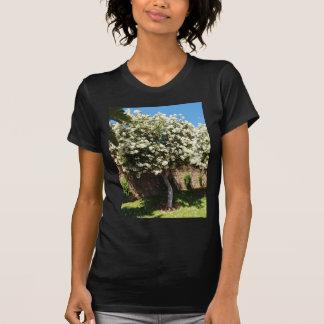 開花のジャスミンの木 Tシャツ