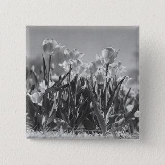 開花のチューリップ 5.1CM 正方形バッジ
