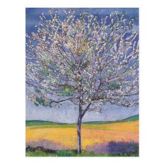 開花のフェルディナントHodler-の桜 ポストカード