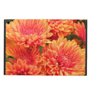 開花のミイラ iPad AIRケース
