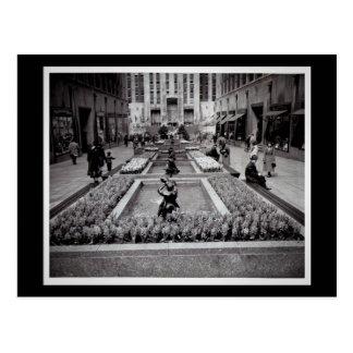 開花のロックフェラーの中心1952 NYCのHyacinths ポストカード
