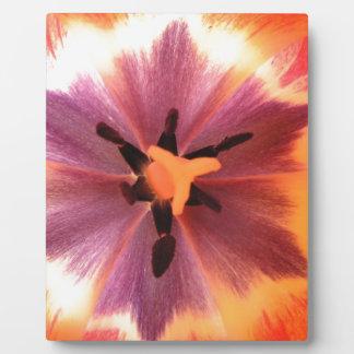開花の元のデジタル芸術のシャクヤクはポスターを印刷しました フォトプラーク