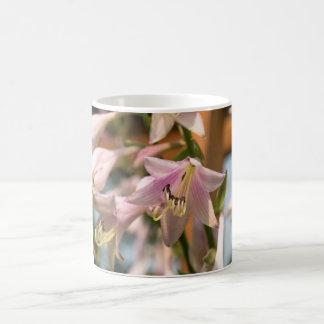 開花の写真のピンクおよび白いHostAの花 コーヒーマグカップ