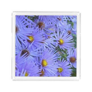 開花の星状体 アクリルトレー