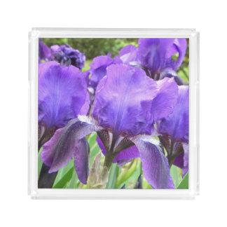 開花の紫色のアイリス アクリルトレー