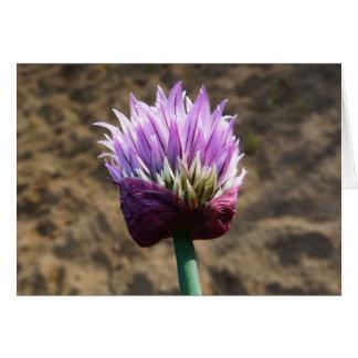 開花の紫色のアサツキの花 カード