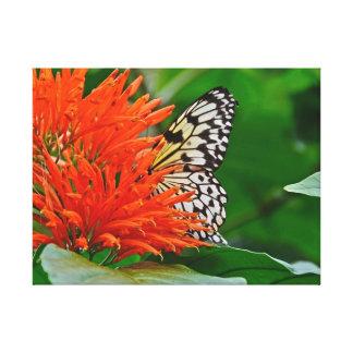 開花の蝶 キャンバスプリント