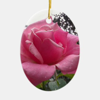 開花の豪華なピンクのバラの花! セラミックオーナメント