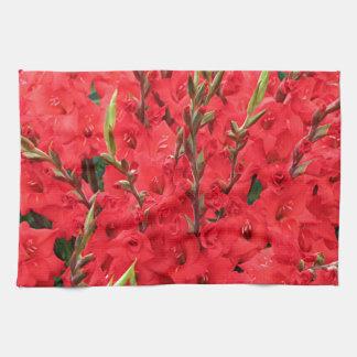 開花の赤いグラジオラスの花 台所タオル