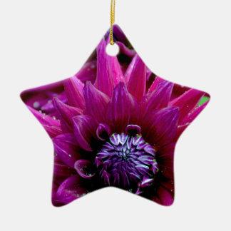 開花の2つの紫色のダリアの花 陶器製星型オーナメント