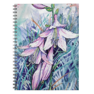 開花のHostA ノートブック