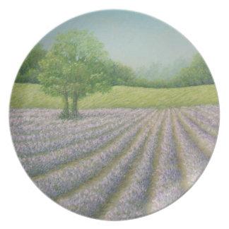 開花、CarshaltonのプレートのMayfieldのラベンダー プレート