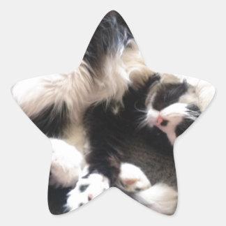 間抜けで眠い猫 星シール