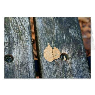 間-静物画の写真-をベンチの葉休ませて下さい カード
