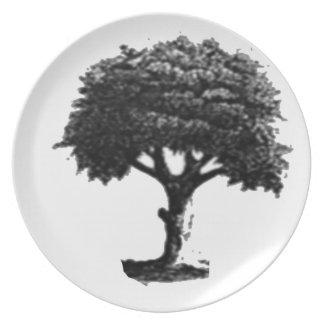 限定版の木のプレートのコレクション プレート