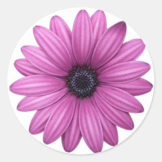 陽気なピンクの花 ラウンドシール