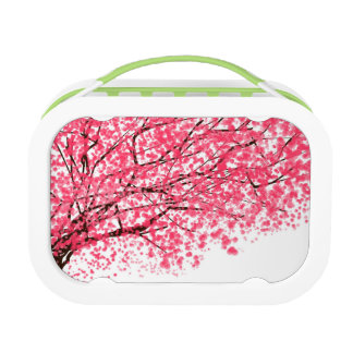 陽気な桜 ランチボックス