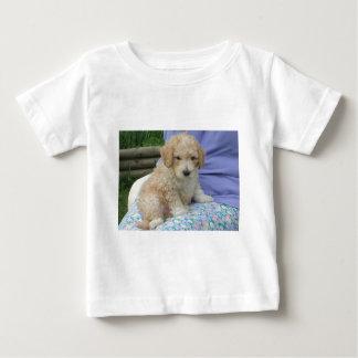 隔離されるあなたの方法を見ている豪華なcavapooの子犬 ベビーTシャツ