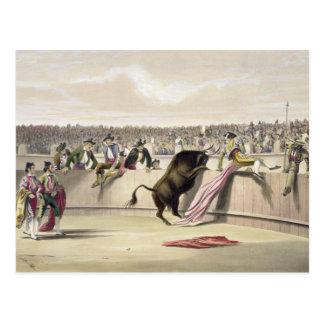 障壁1865年を跳躍させているBull (色のlitho) ポストカード