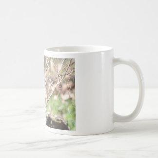 隠れるヒョウ コーヒーマグカップ