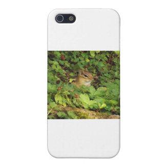 隠れ場所 iPhone 5 COVER