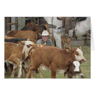 集合の間に子牛と待っているKyle カード